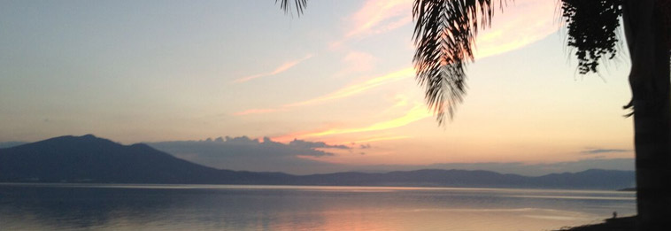 About Life in Lake Chapala
