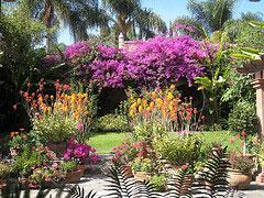 Gorgeous gardens everywhere