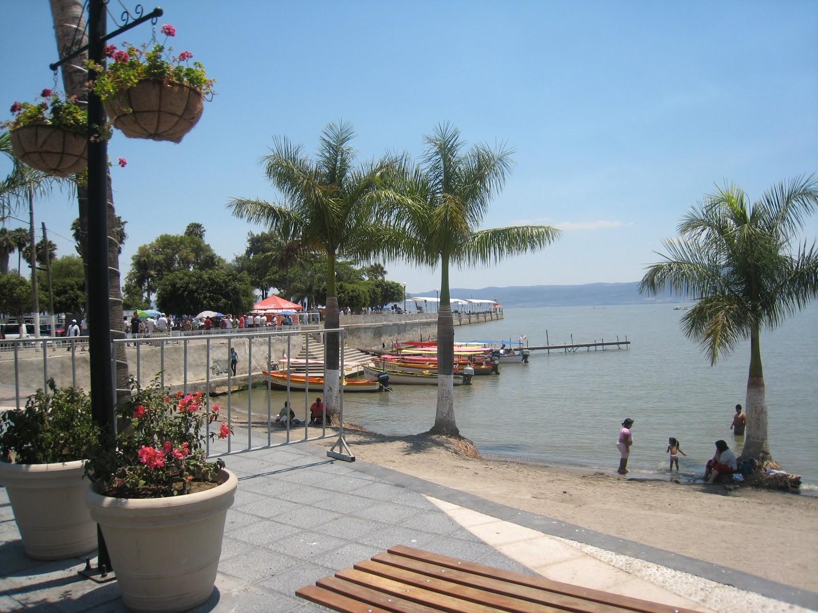 Chapala beach lake palms view