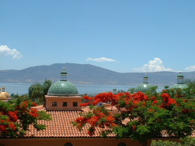 Lake Chapala and Red Flowers