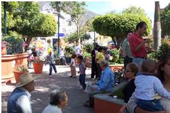 plazas on Sundays